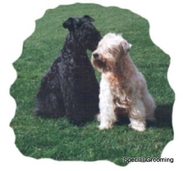 Trimschema Kerry Blue Terrier & Iris Softcoated Wheaten Terrier